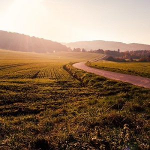 How Much Land Does a Man Need? Lessons From Leo Tolstoy's Short Story
